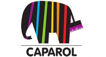 Фасадные краски CAPAROL